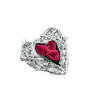 Punutud süda